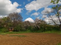 Couleurs de terre au printemps Photo stock