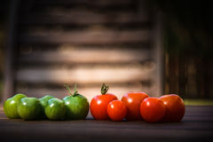 Couleurs des tomates Photo libre de droits
