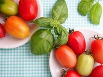 Couleurs des tomates Image stock