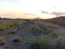 Couleurs douces de coucher du soleil photographie stock libre de droits