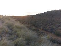 Couleurs douces de coucher du soleil Photo libre de droits