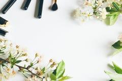 Couleurs et brosses de fond pour la peinture Photo stock