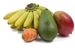 Couleurs exotiques de fruit Photos stock