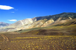 Couleurs fantastiques dans les Andes argentins Photos stock