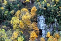 Couleurs glorieuses de feuillage d'automne d'automne d'automne dans les montagnes images stock