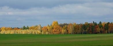 couleurs lumineuses d'automne Images stock