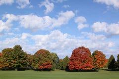Couleurs lumineuses d'automne Photos stock