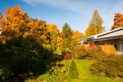 Couleurs lumineuses d'automne dans des arbres d'arrière-cour photographie stock