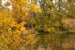 Couleurs lumineuses d'automne en parc par le lac Photographie stock