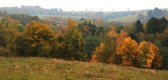 Couleurs rouges d'automne Photos libres de droits