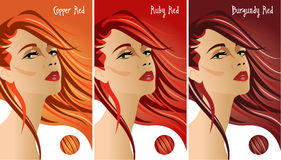 Couleurs rouges de diagramme de cheveux Images stock