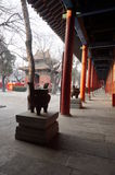 Couloir de Pékin Dongyue Tao Temple Image stock