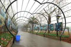 Couloir en verre dans le jardin batanical Image libre de droits