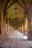 Couloir, université de rue John Images stock