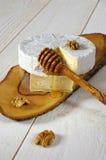 Coulommiers, weicher französischer Käse, Walnüsse und Honig lizenzfreie stockfotos