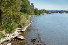 Coulon Park Shoreline 3 Royalty Free Stock Photography