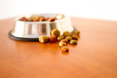 Coulourfull Dog Food Grains. Brown red green and orange dog food grains in a dog dish laying on the floor Royalty Free Stock Photo
