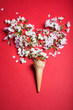 Coun pełno kwiaty Obrazy Stock