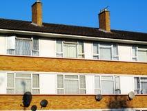 Council flats Stock Photos