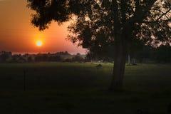 Counrtyside Sunset Scene Royalty Free Stock Photo