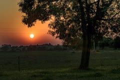 Counrtyside Sunset Scene Stock Images
