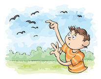 Count the Crows. A young man counts the flying crows Royalty Free Stock Photos