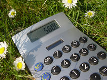 Count on ecology. Calculator on a meadow with daisies Stock Photo