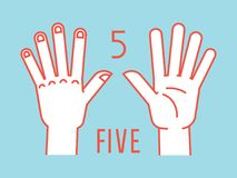 Count on fingers. Number one. Gesture. Stylized hands with all fingers up. Vector. Count on fingers. Number one. Gesture. Stylized hands with all fingers up Royalty Free Stock Images