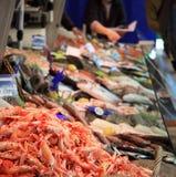counter fisk Arkivfoto