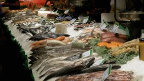 Counter with Seafood in La Boqueria Fish Market. Barcelona. Spain. Counter with various exotic seafood, fish, crabs, clams, shrimps and more. Sea food and fish stock video footage
