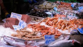 Counter with Seafood in La Boqueria Fish Market. Barcelona. Spain. Counter with various exotic seafood, fish, crabs, clams, shrimps and more. Sea food and fish stock video