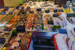 Counter with seafood, Trouville-sur-mer, France Royalty Free Stock Images