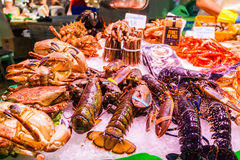 Countertop with various fresh seafood in Boqueria market. Barcelona Royalty Free Stock Image