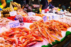 Countertop with various fresh seafood in Boqueria market. Barcelona Stock Images