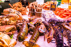 Countertop with various fresh seafood in Boqueria market. Barcelona Stock Photography