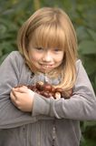 Counting conkers from a horse chestnut tree. Young girl with an armful of conkers and a big smile Stock Images