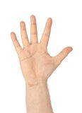 Counting hand - five Stock Image