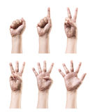 Counting hand sign. Set of counting hand sign isolated on white Stock Images