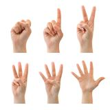 Counting hands (0 to 5) Stock Photos
