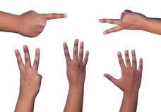Counting hands Stock Image