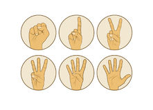 Counting hands fingers. 0 to 5 isolated on white background Royalty Free Stock Images