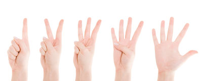 Counting Hands from one to five Royalty Free Stock Photography