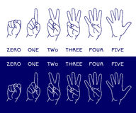 Counting hands set. Counting hands showing different number of fingers. Graphic design element for teaching math to young children as school printout. Great for Royalty Free Stock Photos