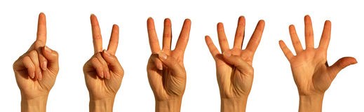 Counting Hands on white Royalty Free Stock Images