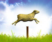 Counting jumping sheep Royalty Free Stock Photography