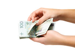Counting lots of polish banknotes Royalty Free Stock Image