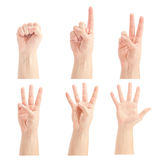 Counting man hands (0 to 5). Isolated on white background Stock Images