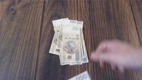 Counting money. Polish PLN Zloty stock footage