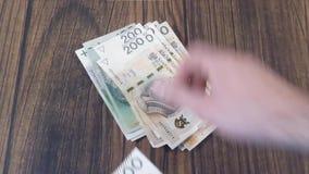Counting money. Polish PLN Zloty stock video