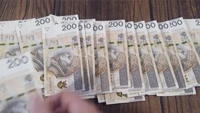 Counting money. Polish PLN Zloty stock video